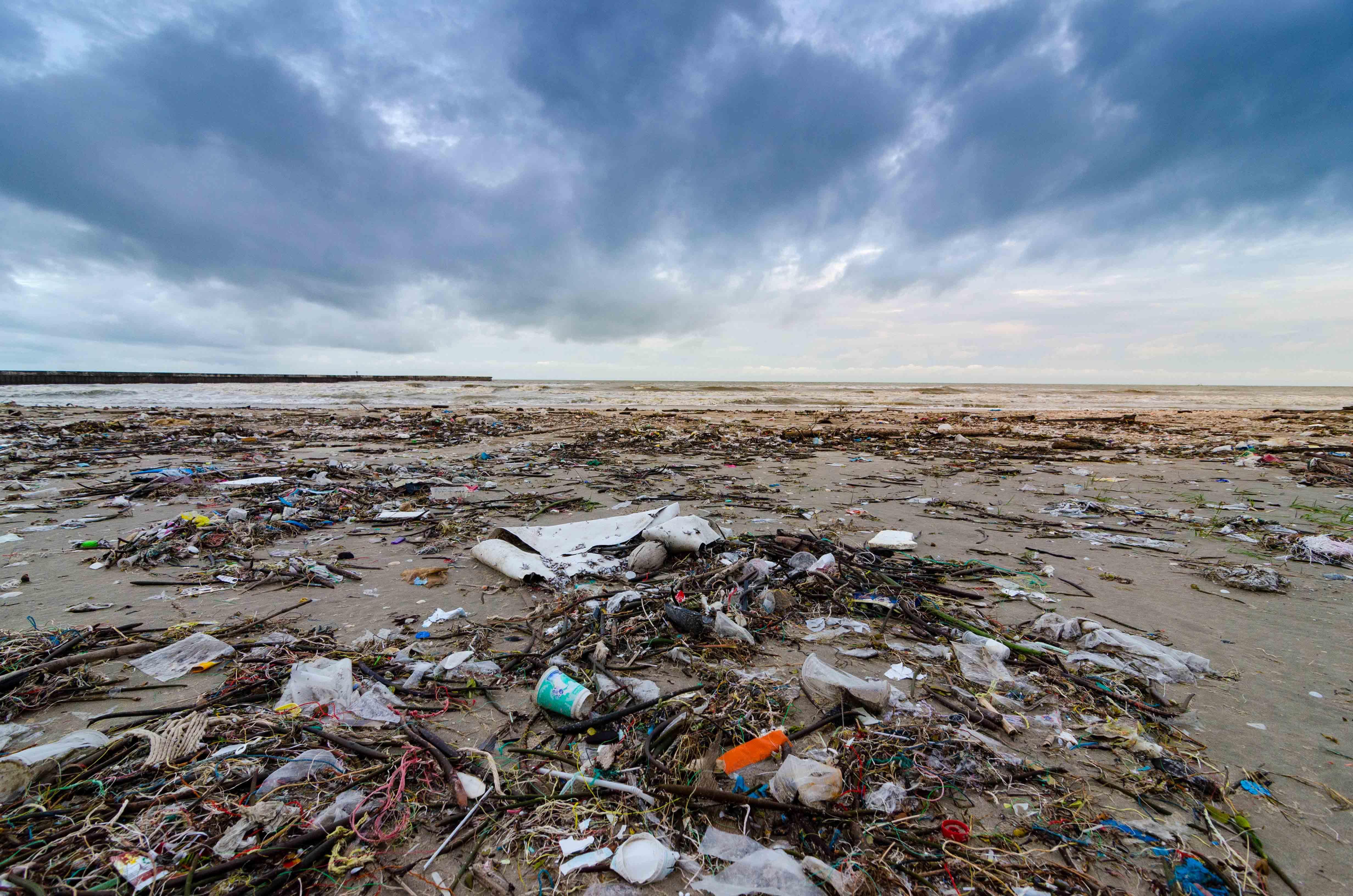 Las farmacias dicen adiós a las bolsas de plástico mientras apoyan el acceso a la salud